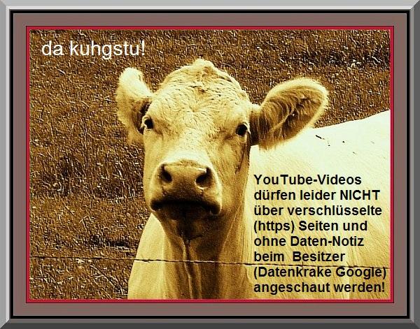 Achtung: Beim Aufruf des Videos werden Daten gespeichert (c) HESSENMAGAZIN.de